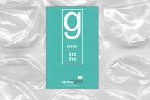Nuovo DIARIO GERRA 010-011, 12 produzioni 2010-2011 in formato fanzine