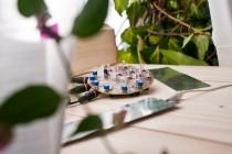 Sonificazione di piante e texture sonore a cura di Green On / Inaugurazione sabato 9 Novembre ore 18